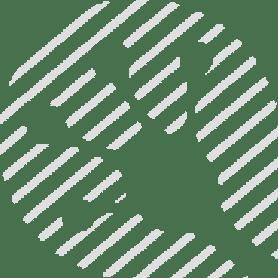 Lifeguard Logo Crossed